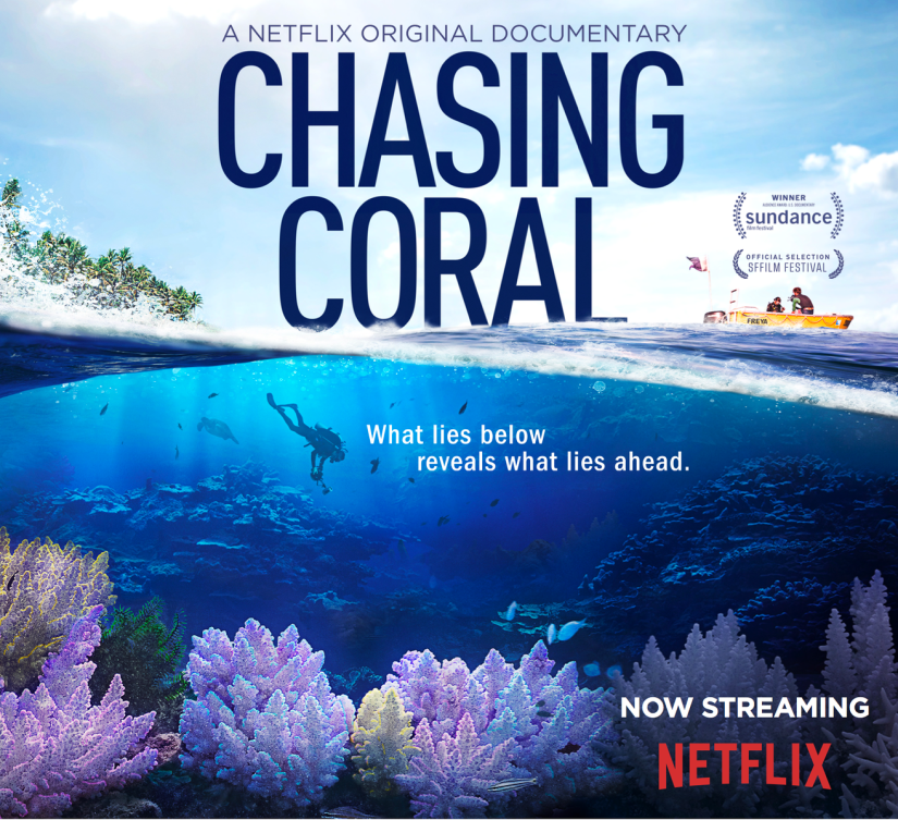 Chasing Coral – A Film Everyone Needs to See